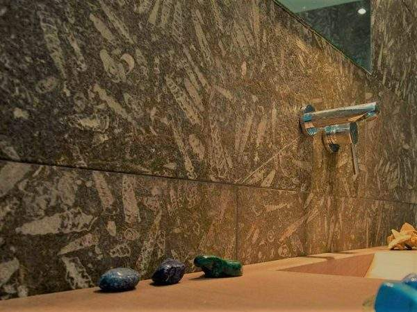 Jurassic Brown granit